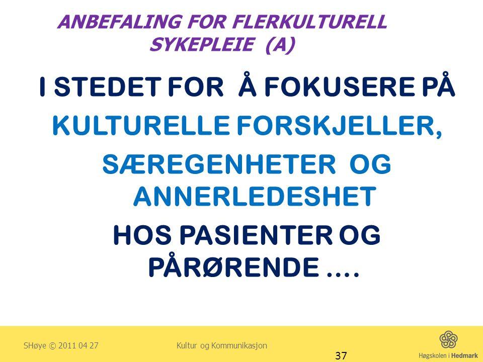 ANBEFALING FOR FLERKULTURELL SYKEPLEIE (A) I STEDET FOR Å FOKUSERE PÅ KULTURELLE FORSKJELLER, SÆREGENHETER OG ANNERLEDESHET HOS PASIENTER OG PÅRØRENDE