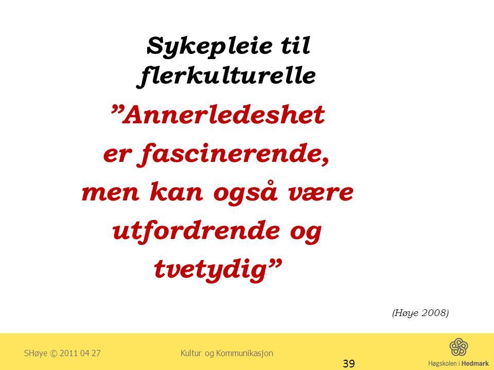 """Sykepleie til flerkulturelle """"Annerledeshet er fascinerende, men kan også være utfordrende og tvetydig"""" (Høye 2008) SHøye © 2011 04 27 Kultur og Kommu"""