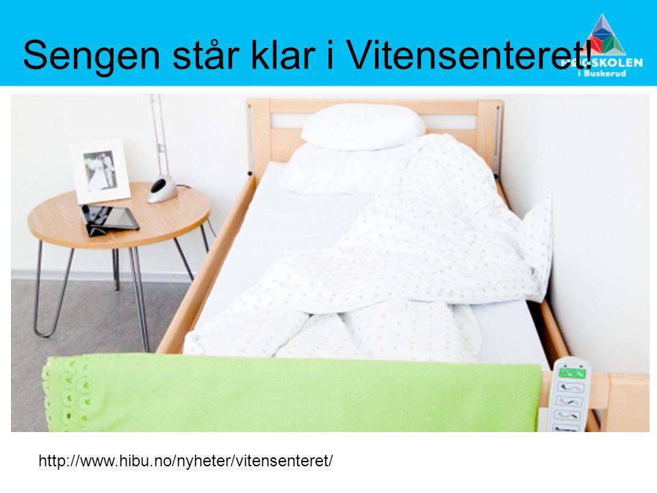 Sengen står klar i Vitensenteret! http://www.hibu.no/nyheter/vitensenteret/