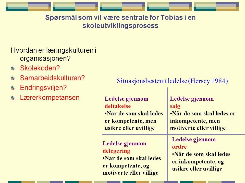 Spørsmål som vil være sentrale for Tobias i en skoleutviklingsprosess Hvordan er læringskulturen i organisasjonen? Skolekoden? Samarbeidskulturen? End