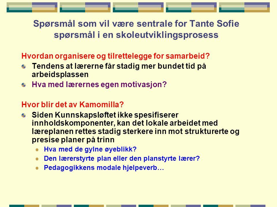 Spørsmål som vil være sentrale for Tante Sofie spørsmål i en skoleutviklingsprosess Hvordan organisere og tilrettelegge for samarbeid? Tendens at lære