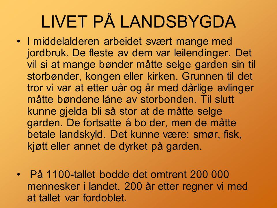 LIVET PÅ LANDSBYGDA •I middelalderen arbeidet svært mange med jordbruk.