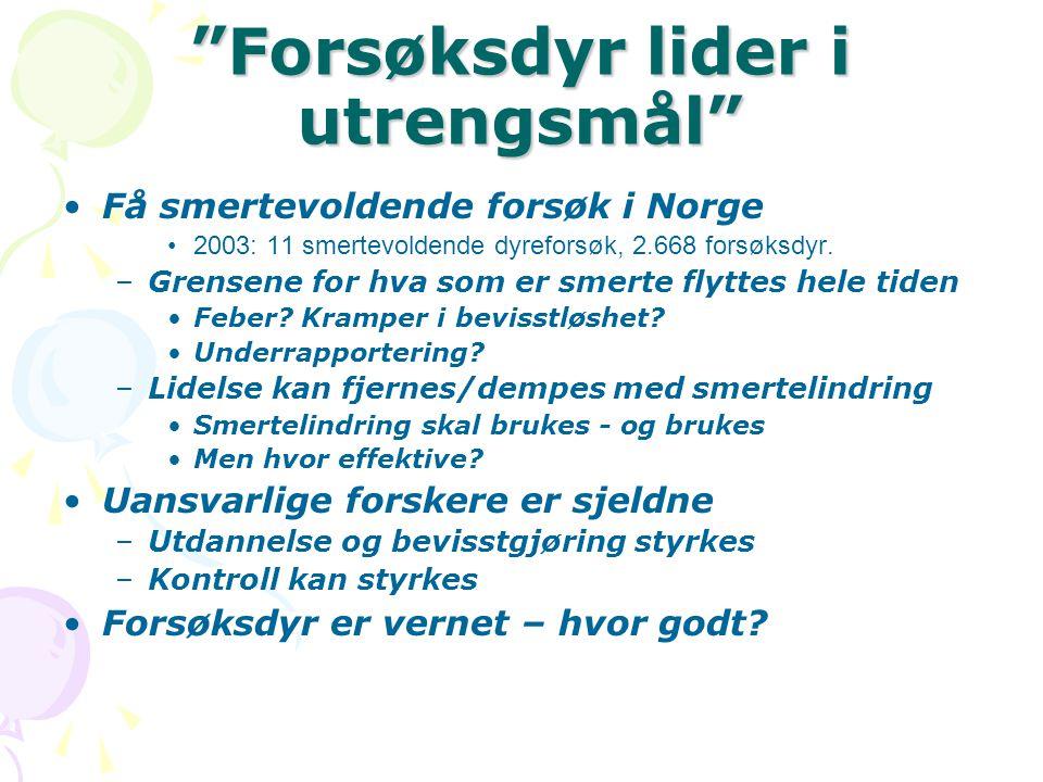 """""""Forsøksdyr lider i utrengsmål"""" •Få smertevoldende forsøk i Norge •2003: 11 smertevoldende dyreforsøk, 2.668 forsøksdyr. –Grensene for hva som er smer"""