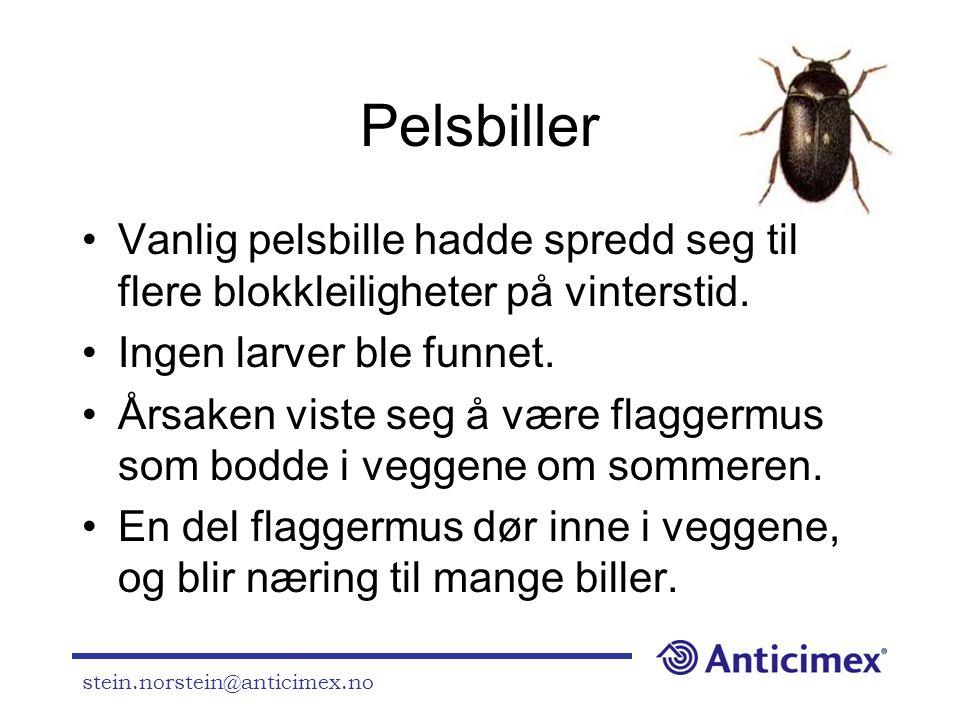 stein.norstein@anticimex.no Pelsbiller •Vanlig pelsbille hadde spredd seg til flere blokkleiligheter på vinterstid. •Ingen larver ble funnet. •Årsaken