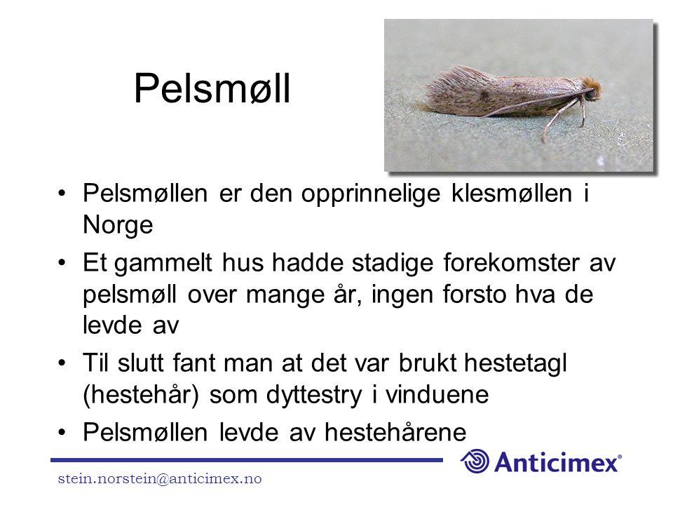 stein.norstein@anticimex.no Pelsmøll •Pelsmøllen er den opprinnelige klesmøllen i Norge •Et gammelt hus hadde stadige forekomster av pelsmøll over man