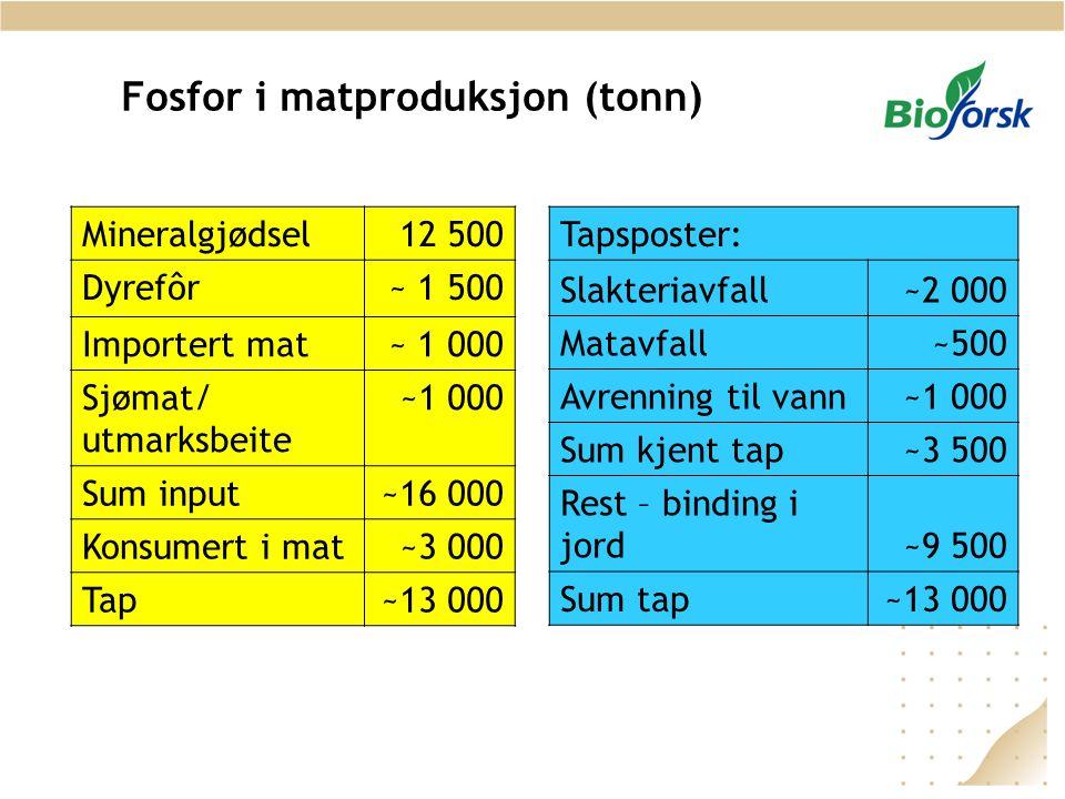 Fosfor i matproduksjon (tonn) Mineralgjødsel12 500 Dyrefôr~ 1 500 Importert mat~ 1 000 Sjømat/ utmarksbeite ~1 000 Sum input~16 000 Konsumert i mat~3