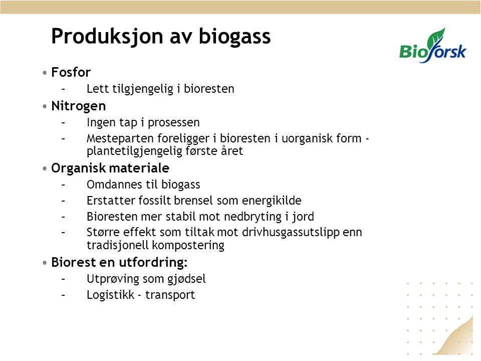 Produksjon av biogass •Fosfor –Lett tilgjengelig i bioresten •Nitrogen –Ingen tap i prosessen –Mesteparten foreligger i bioresten i uorganisk form - p