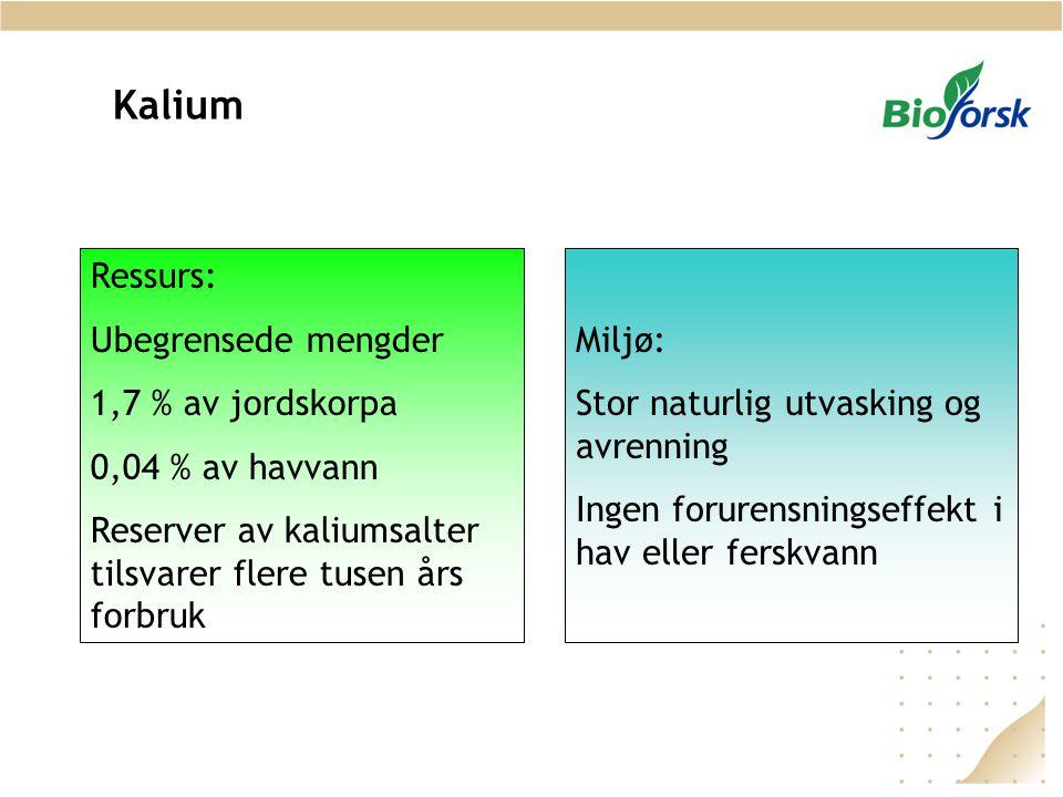 Kalium Ressurs: Ubegrensede mengder 1,7 % av jordskorpa 0,04 % av havvann Reserver av kaliumsalter tilsvarer flere tusen års forbruk Miljø: Stor natur