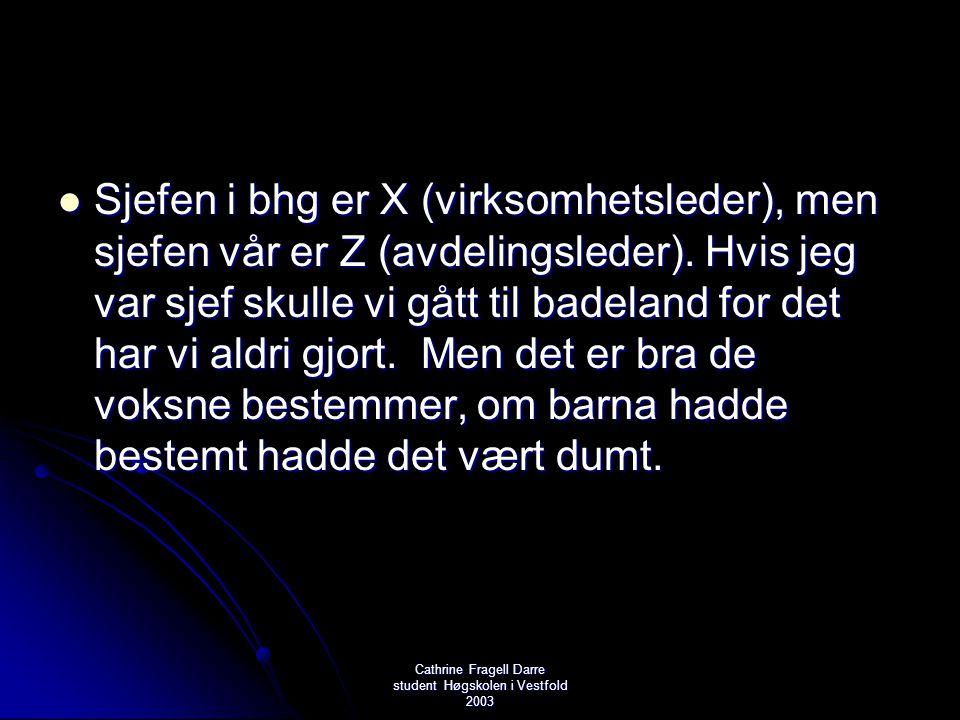 Cathrine Fragell Darre student Høgskolen i Vestfold 2003  Sjefen i bhg er X (virksomhetsleder), men sjefen vår er Z (avdelingsleder). Hvis jeg var sj