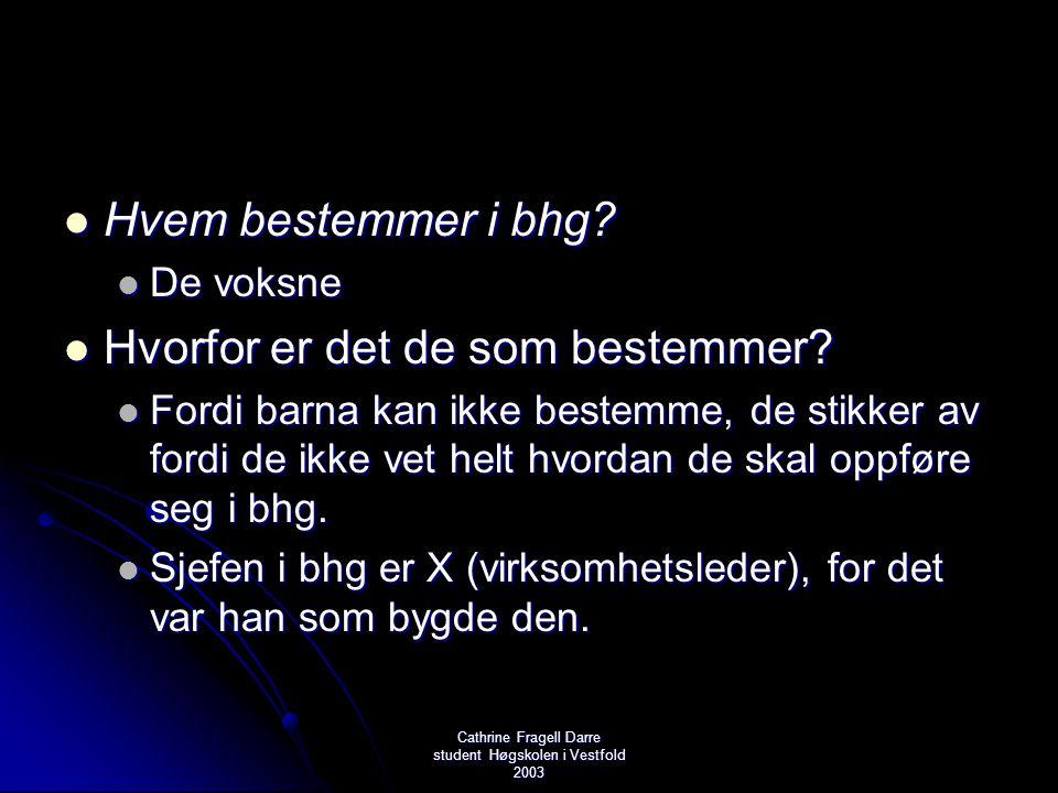 Cathrine Fragell Darre student Høgskolen i Vestfold 2003  Hvem bestemmer i bhg?  De voksne  Hvorfor er det de som bestemmer?  Fordi barna kan ikke