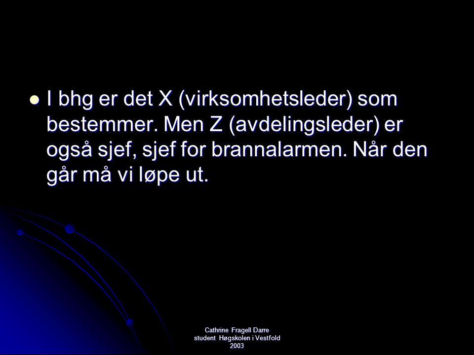 Cathrine Fragell Darre student Høgskolen i Vestfold 2003  I bhg er det X (virksomhetsleder) som bestemmer. Men Z (avdelingsleder) er også sjef, sjef
