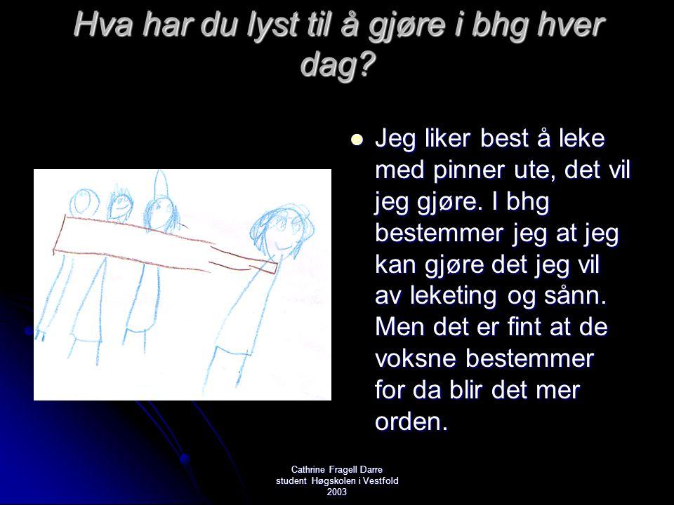 Cathrine Fragell Darre student Høgskolen i Vestfold 2003 Hva har du lyst til å gjøre i bhg hver dag?  Jeg liker best å leke med pinner ute, det vil j