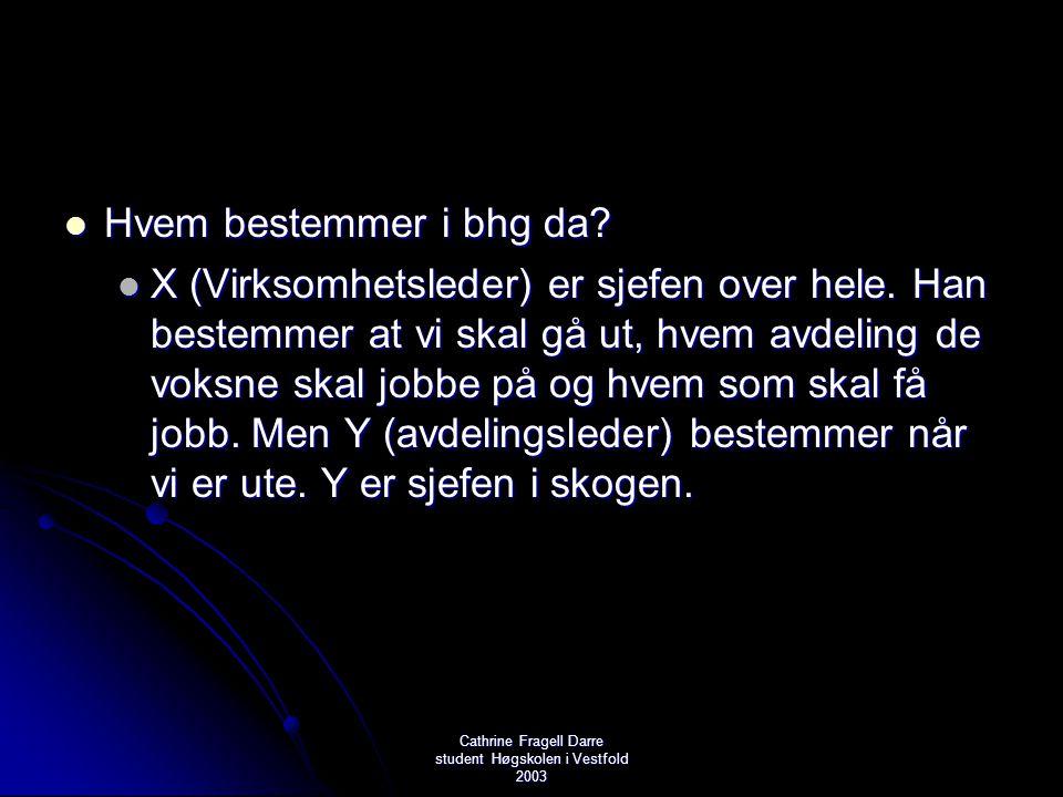 Cathrine Fragell Darre student Høgskolen i Vestfold 2003  Hvem bestemmer i bhg da?  X (Virksomhetsleder) er sjefen over hele. Han bestemmer at vi sk