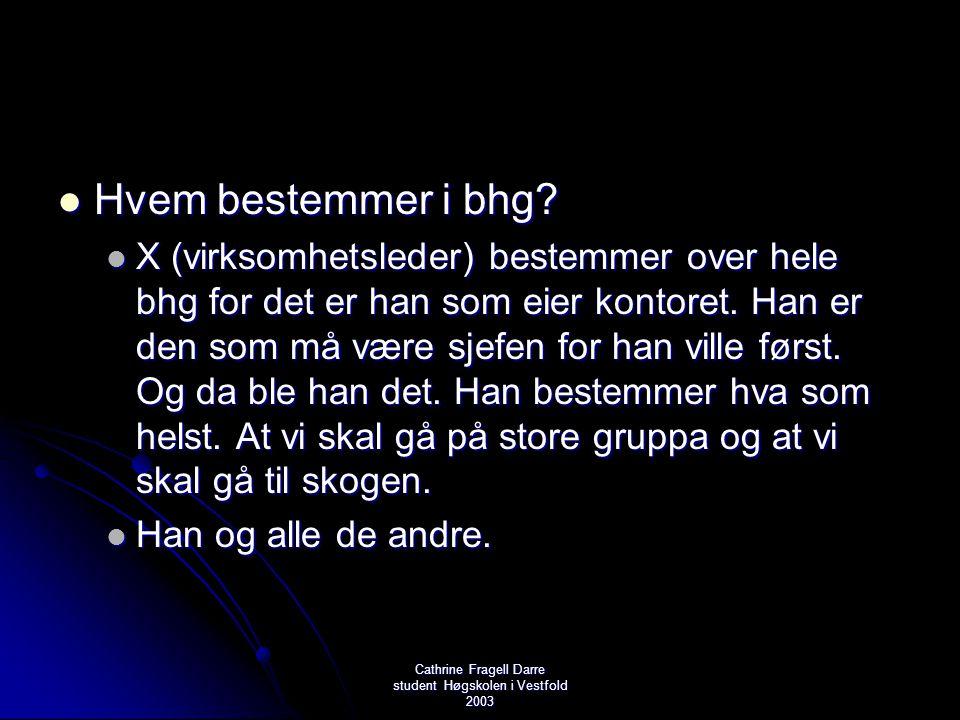 Cathrine Fragell Darre student Høgskolen i Vestfold 2003  Hvem bestemmer i bhg?  X (virksomhetsleder) bestemmer over hele bhg for det er han som eie