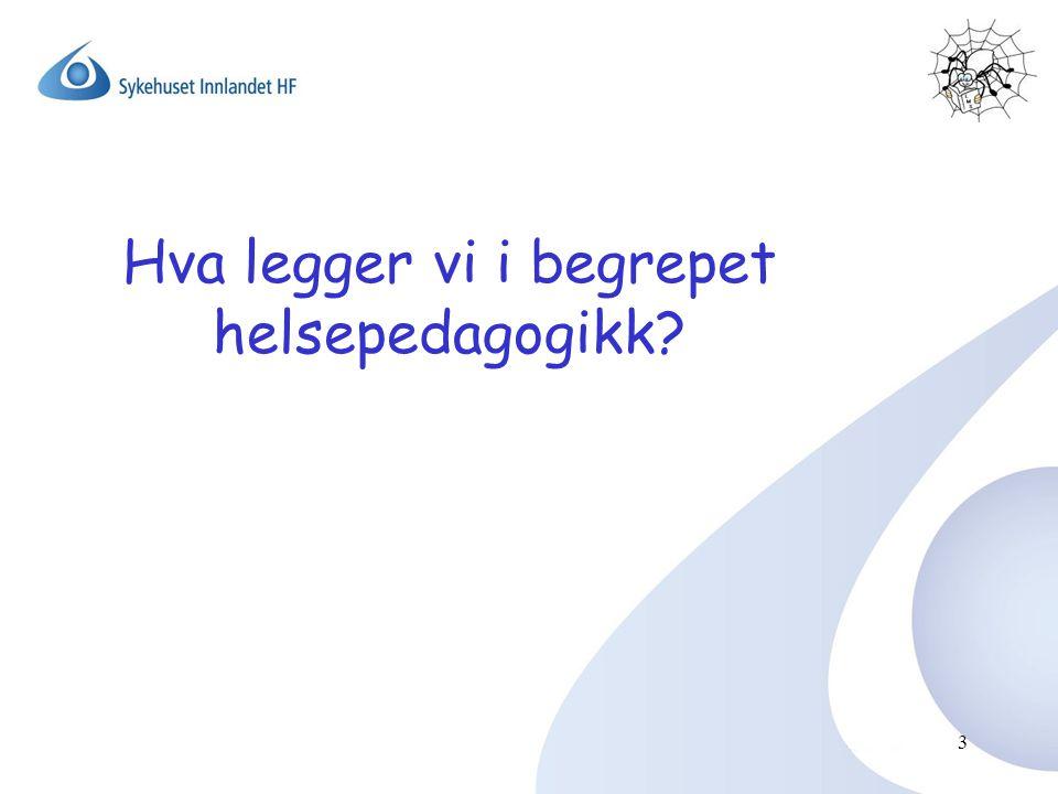 3 Hva legger vi i begrepet helsepedagogikk?