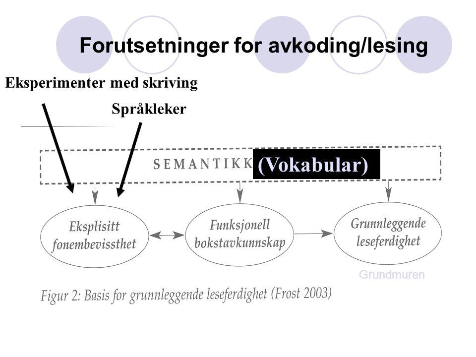 Eksperimenter med skriving Språkleker (Vokabular) Grundmuren Forutsetninger for avkoding/lesing