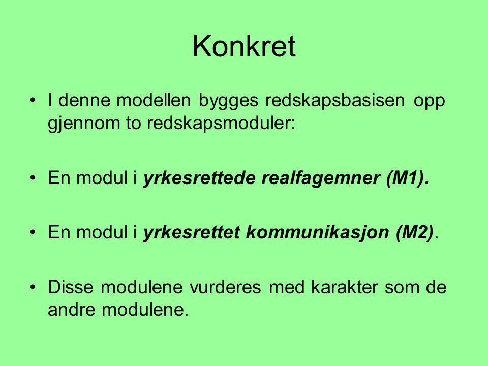 Konkret •I denne modellen bygges redskapsbasisen opp gjennom to redskapsmoduler: •En modul i yrkesrettede realfagemner (M1).
