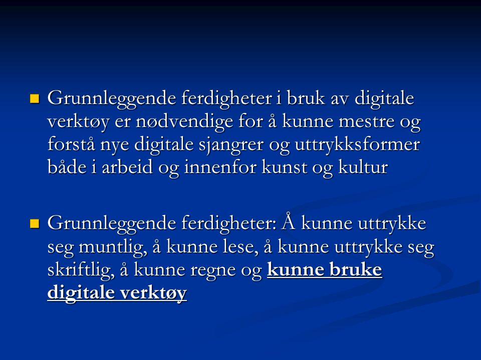 Program for digital kompetanse 2004-2008  Programmets visjon: Digital kompetanse for alle.