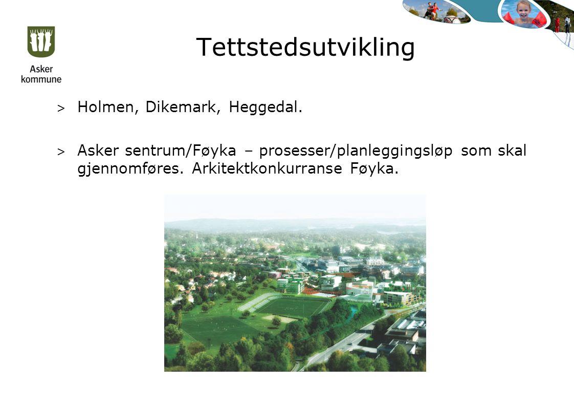 Tettstedsutvikling > Holmen, Dikemark, Heggedal.