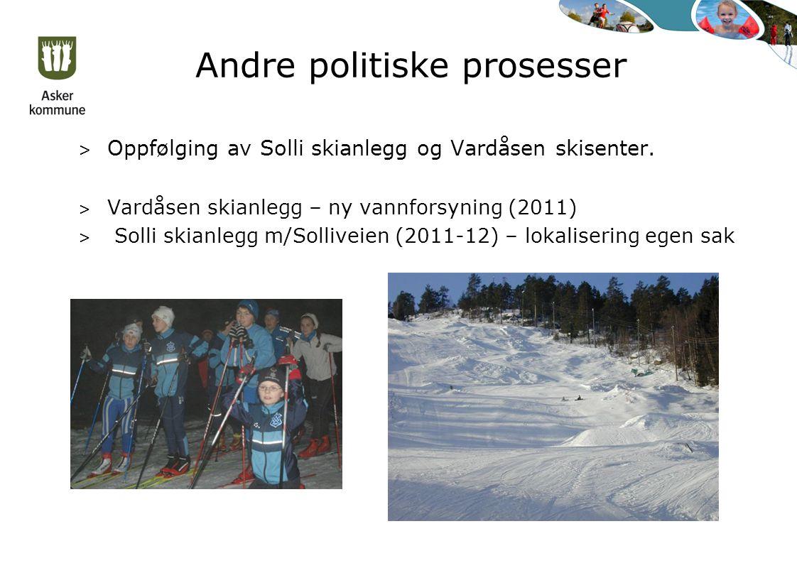 Andre politiske prosesser > Oppfølging av Solli skianlegg og Vardåsen skisenter.