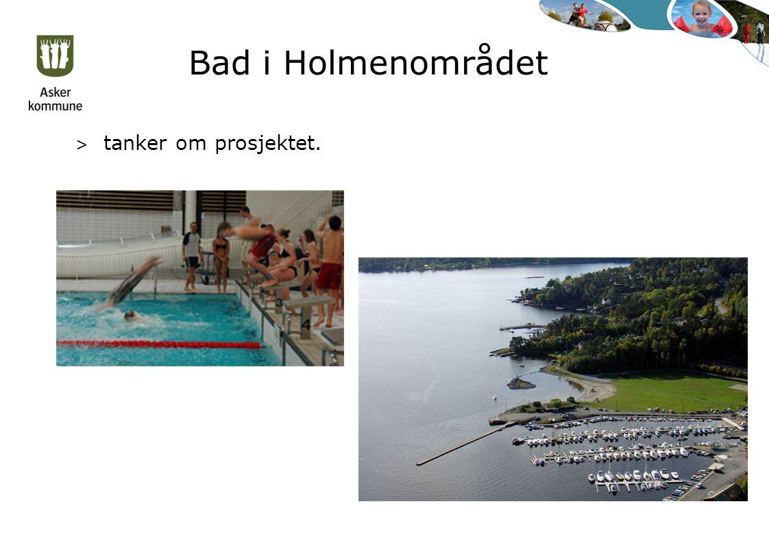 Bad i Holmenområdet > tanker om prosjektet.