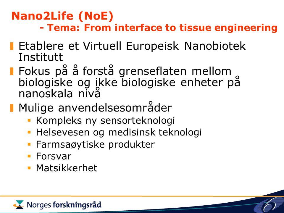 Nano2Life (NoE) - Tema: From interface to tissue engineering Etablere et Virtuell Europeisk Nanobiotek Institutt Fokus på å forstå grenseflaten mellom