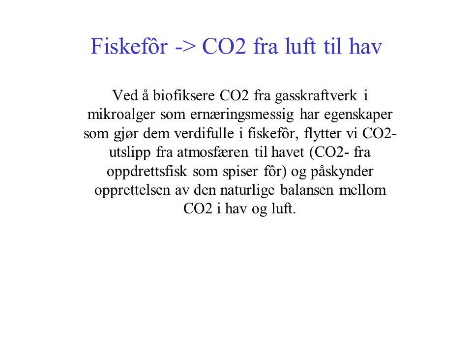 Fiskefôr -> CO2 fra luft til hav Ved å biofiksere CO2 fra gasskraftverk i mikroalger som ernæringsmessig har egenskaper som gjør dem verdifulle i fiskefôr, flytter vi CO2- utslipp fra atmosfæren til havet (CO2- fra oppdrettsfisk som spiser fôr) og påskynder opprettelsen av den naturlige balansen mellom CO2 i hav og luft.