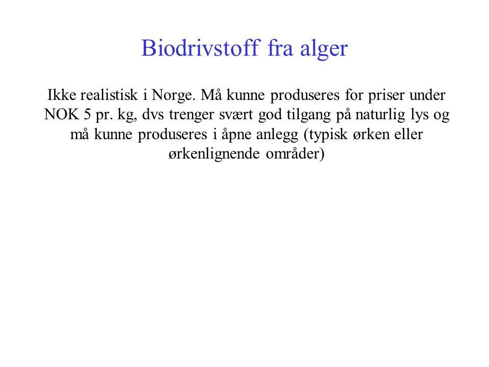 Biodrivstoff fra alger Ikke realistisk i Norge. Må kunne produseres for priser under NOK 5 pr. kg, dvs trenger svært god tilgang på naturlig lys og må