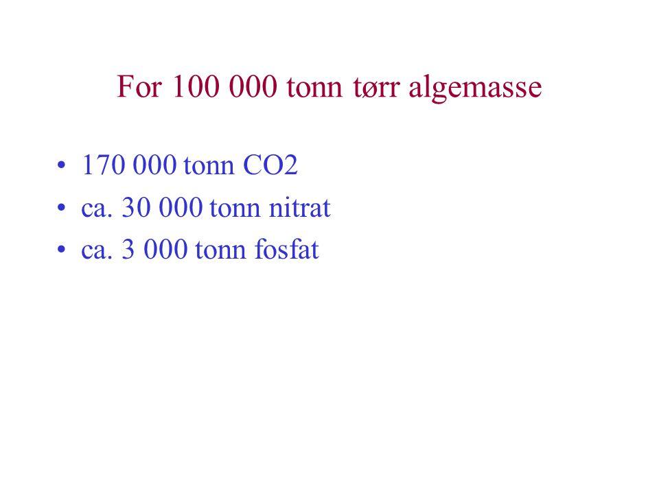 For 100 000 tonn tørr algemasse •170 000 tonn CO2 •ca. 30 000 tonn nitrat •ca. 3 000 tonn fosfat