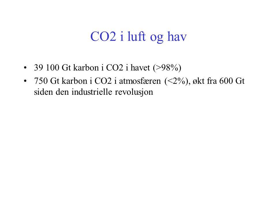 Miljøvennlig gasskraftverk med fórproduksjon