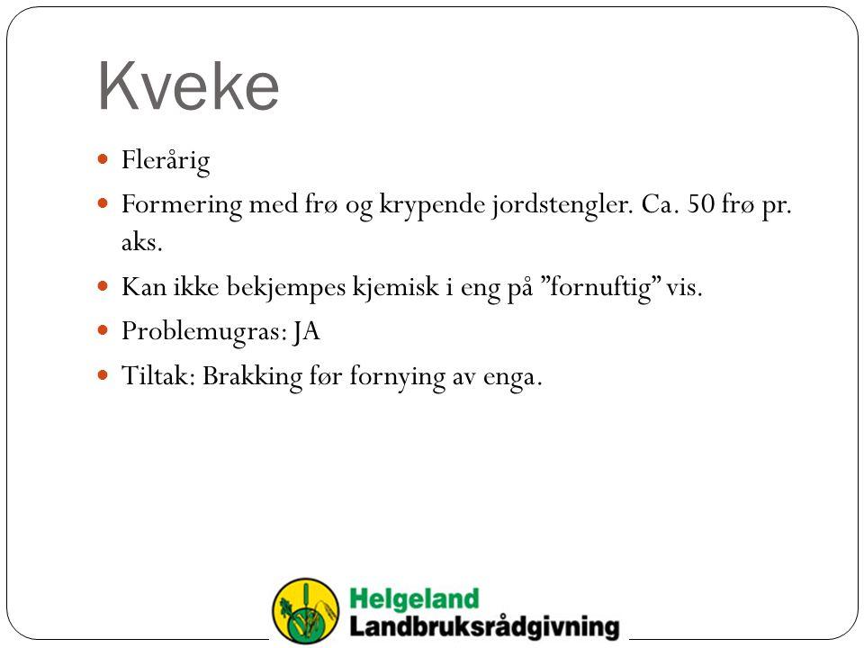 Kveke  Flerårig  Formering med frø og krypende jordstengler.