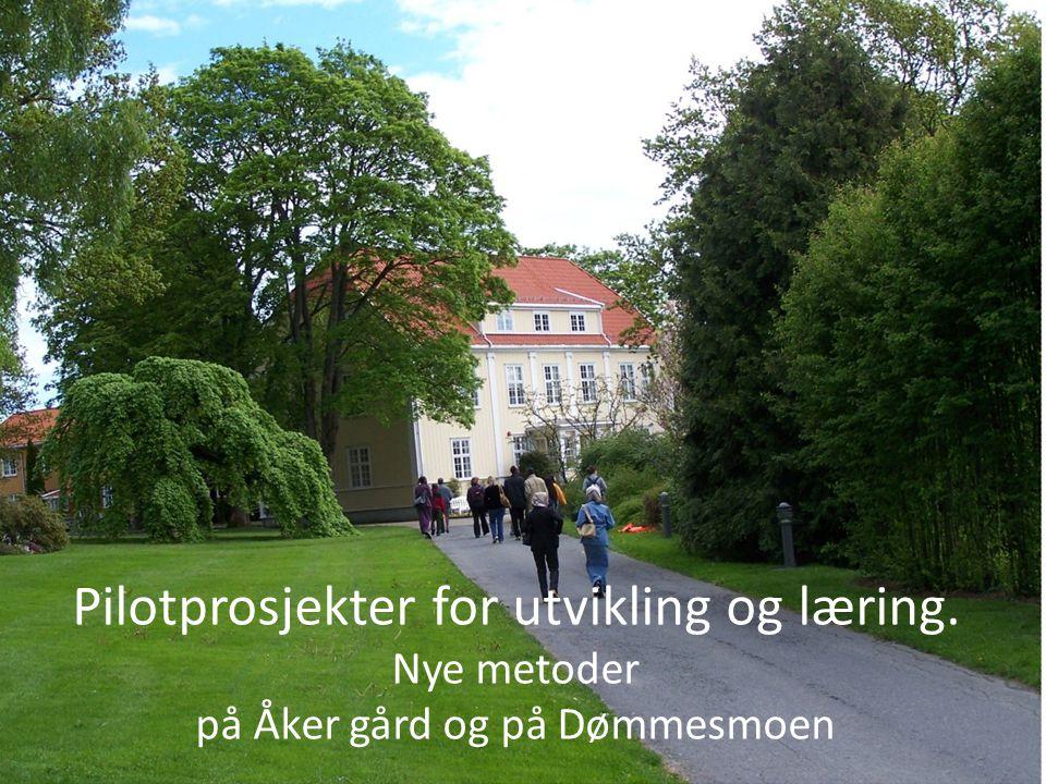 Eksempel Dømmesmoen Pilotprosjekter for utvikling og læring.