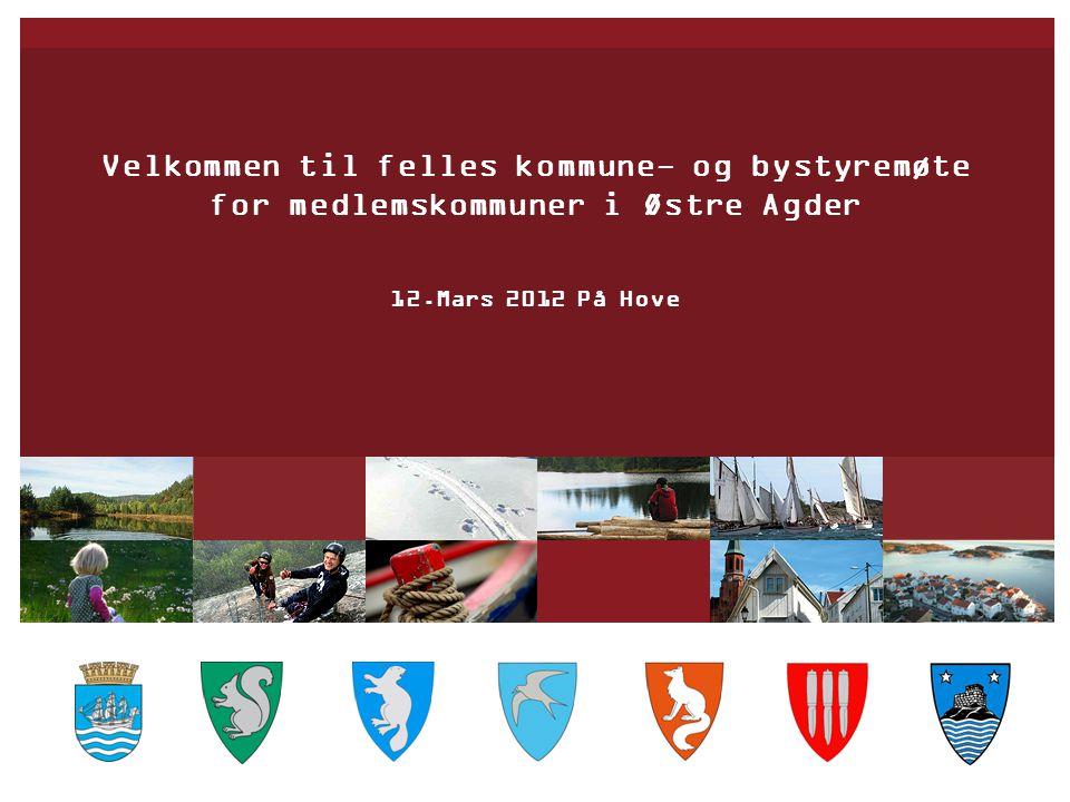 Velkommen til felles kommune- og bystyremøte for medlemskommuner i Østre Agder 12.Mars 2012 På Hove