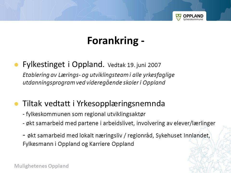 Mulighetenes Oppland Forankring -  Fylkestinget i Oppland. Vedtak 19. juni 2007 Etablering av Lærings- og utviklingsteam i alle yrkesfaglige utdannin