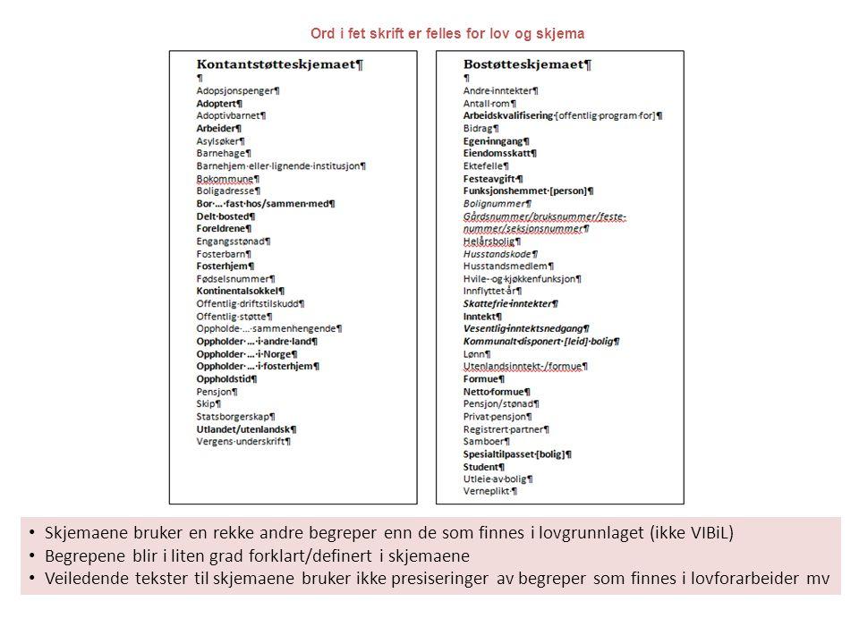 • Skjemaene bruker en rekke andre begreper enn de som finnes i lovgrunnlaget (ikke VIBiL) • Begrepene blir i liten grad forklart/definert i skjemaene