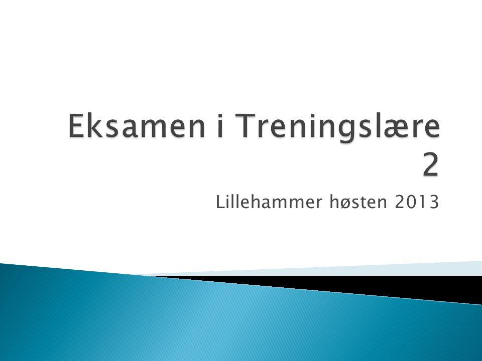 Lillehammer høsten 2013