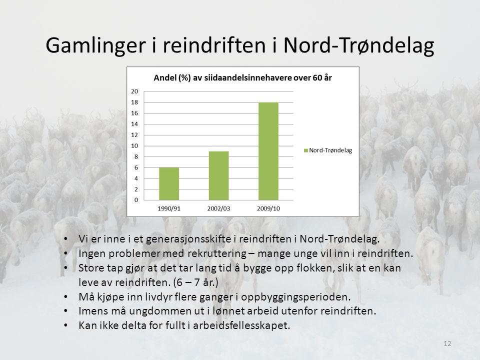 Gamlinger i reindriften i Nord-Trøndelag • Vi er inne i et generasjonsskifte i reindriften i Nord-Trøndelag.