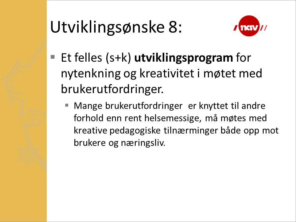 Utviklingsønske 8:  Et felles (s+k) utviklingsprogram for nytenkning og kreativitet i møtet med brukerutfordringer.  Mange brukerutfordringer er kny