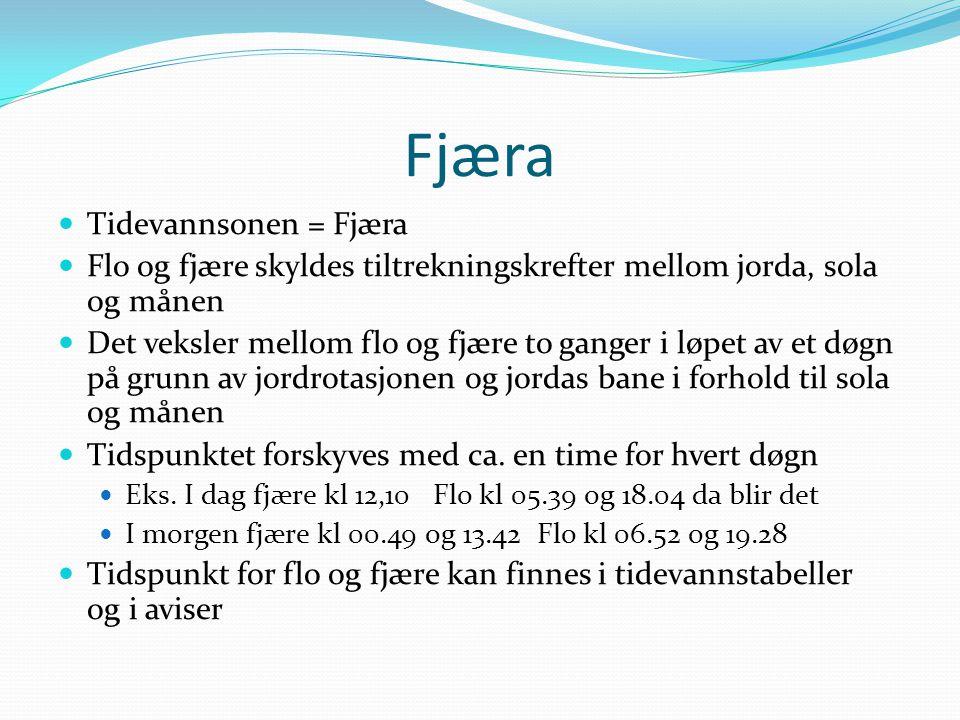 Fjæra  Tidevannsonen = Fjæra  Flo og fjære skyldes tiltrekningskrefter mellom jorda, sola og månen  Det veksler mellom flo og fjære to ganger i løp