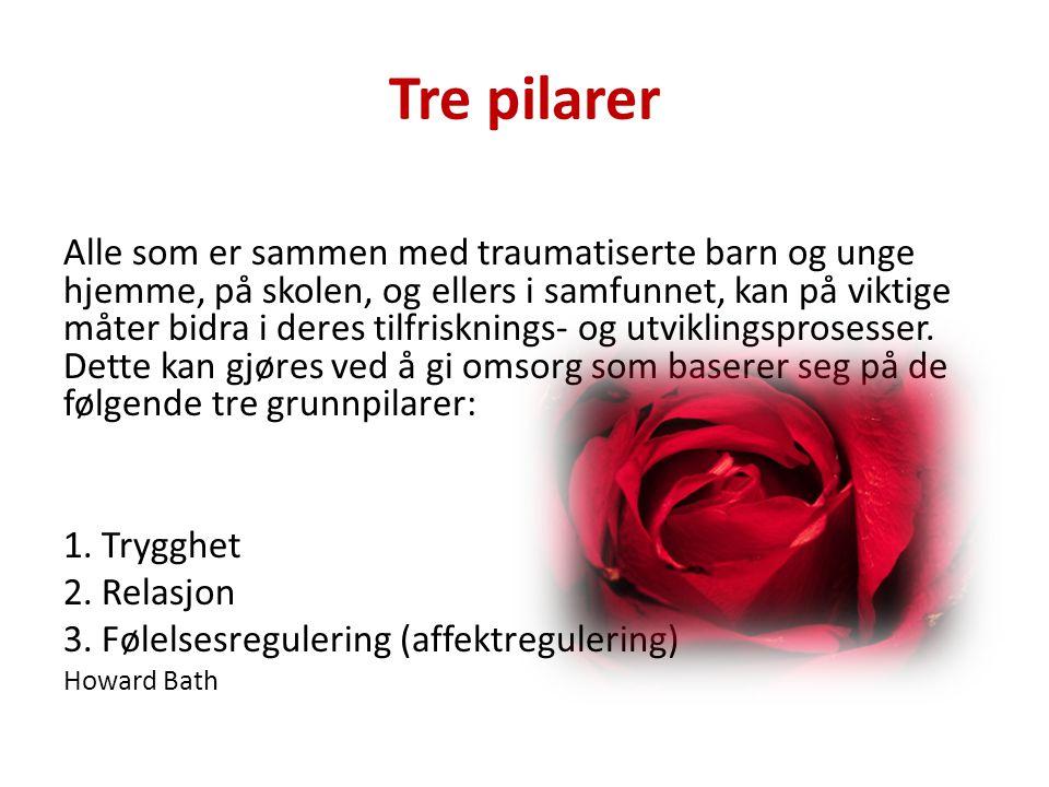 Telefonkonsultasjon • Fagansvarlig kontakter RVTS Sør.