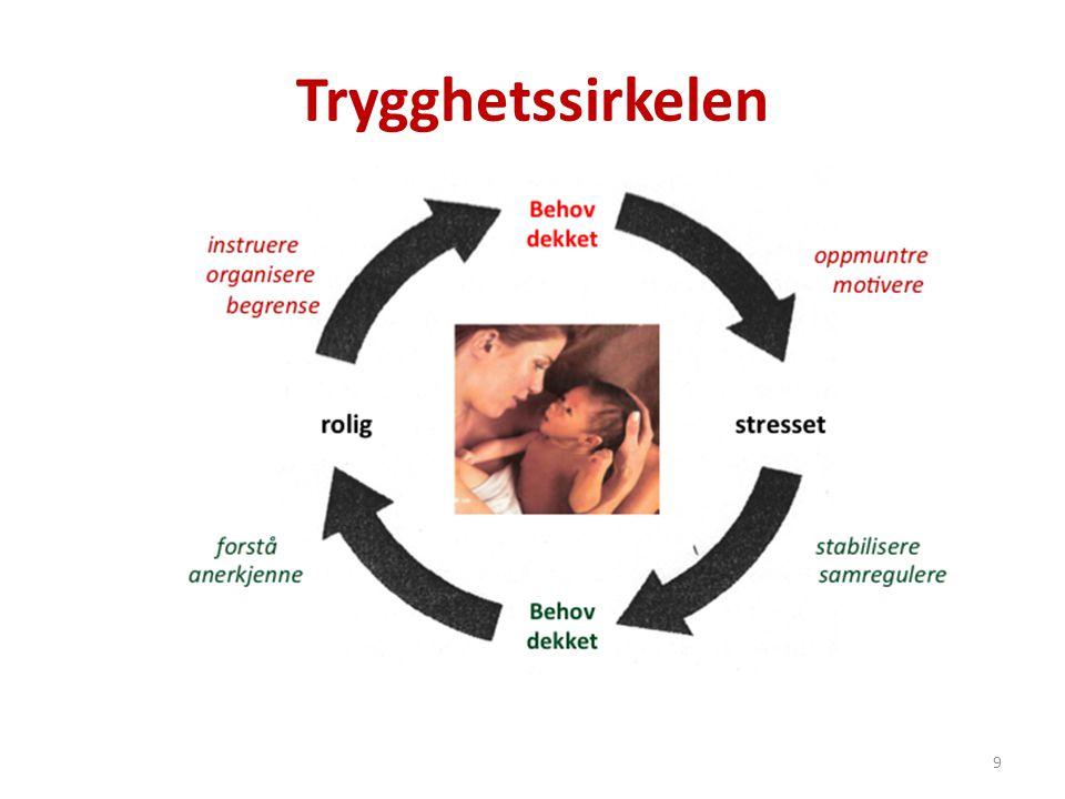 Refleksjonssirkelen 1.Sirkel: Barnets behov.