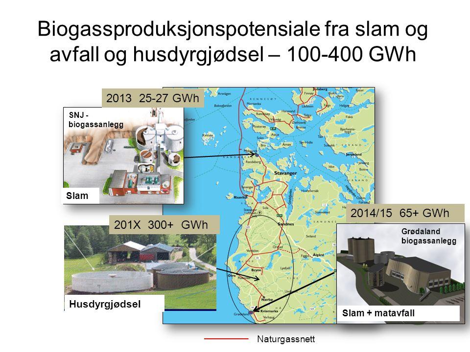 Naturgassnett Grødaland biogassanlegg Biogassproduksjonspotensiale fra slam og avfall og husdyrgjødsel – 100-400 GWh SNJ - biogassanlegg Slam Slam + m
