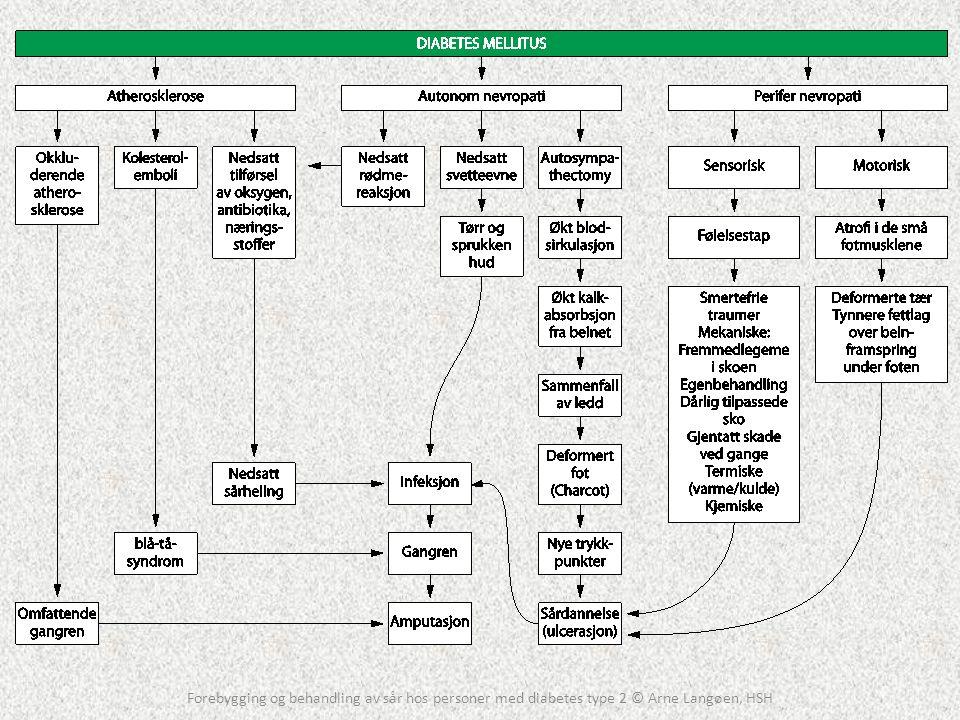 Fordeling av komplikasjoner Forebygging og behandling av sår hos personer med diabetes type 2 © Arne Langøen, HSH