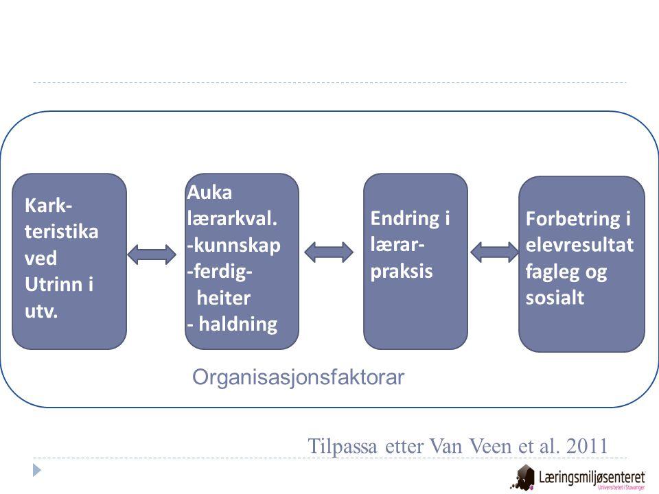 Klasseledelse Emosjonell støtte Organisering og tilsyn Læringsstøtte