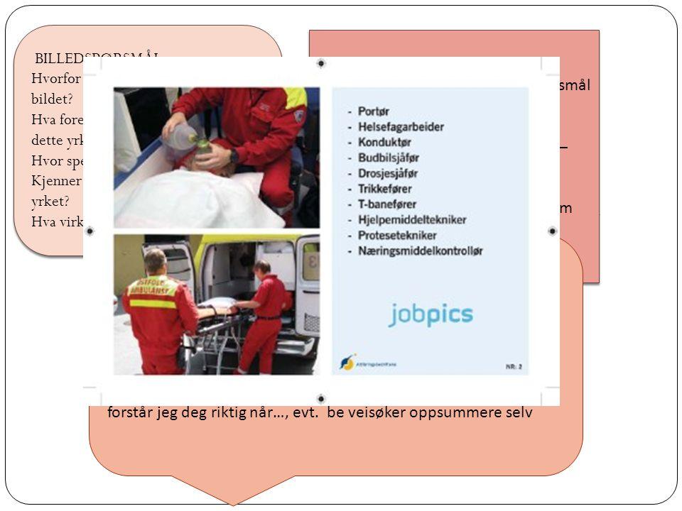 Jobpics består av  183 billedkort  Prosesskort: Ikke interessert, litt interessert, interessert  De 6 interessekategoriene - Praktisk - Teoretisk -