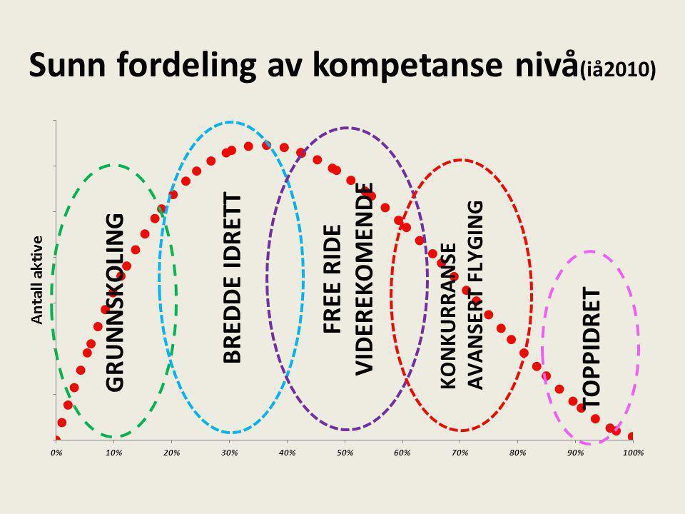 Sunn fordeling av kompetanse nivå (iå2010)