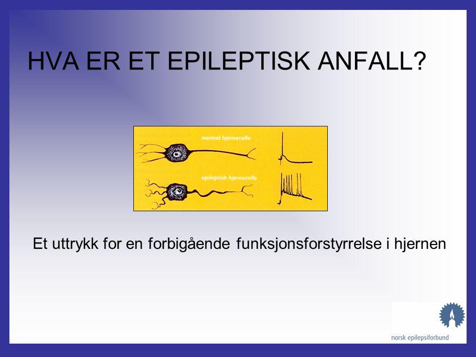 Norsk Epilepsiforbund // Karl Johansgt. 7, 0154 Oslo // 22 47 66 00 // 22 47 66 01 // nef@epilepsi.no Norsk Epilepsiforbund kunnskap, mestring og livs
