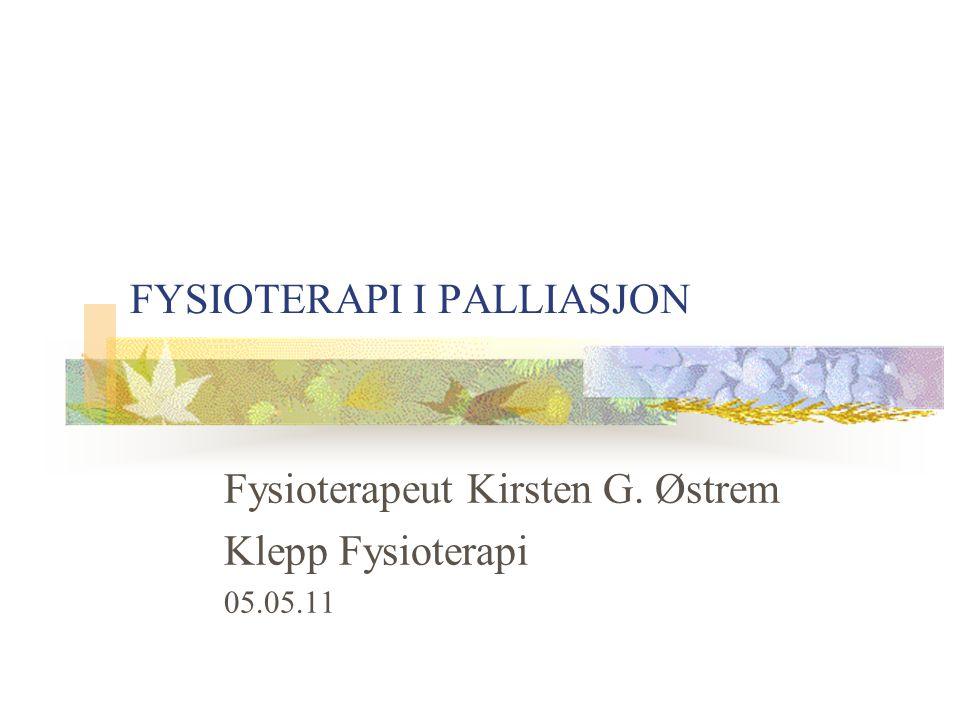 FYSIOTERAPI I PALLIASJON Fysioterapeut Kirsten G. Østrem Klepp Fysioterapi 05.05.11
