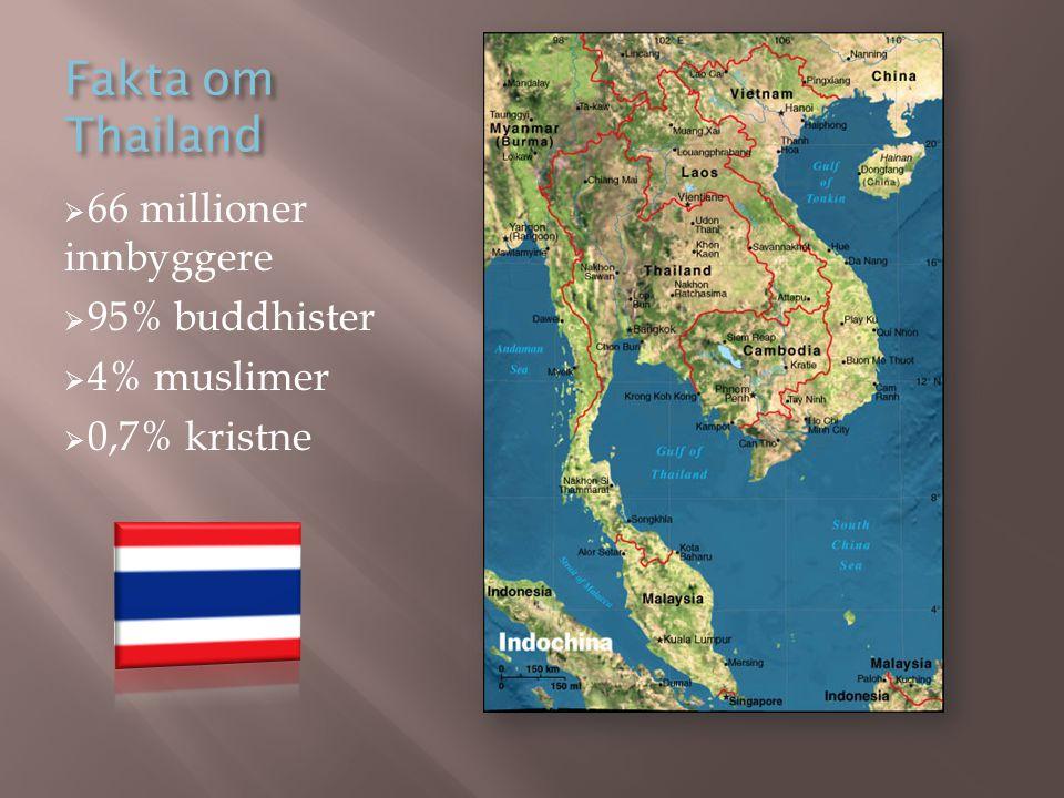 Fakta om Thailand  66 millioner innbyggere  95% buddhister  4% muslimer  0,7% kristne