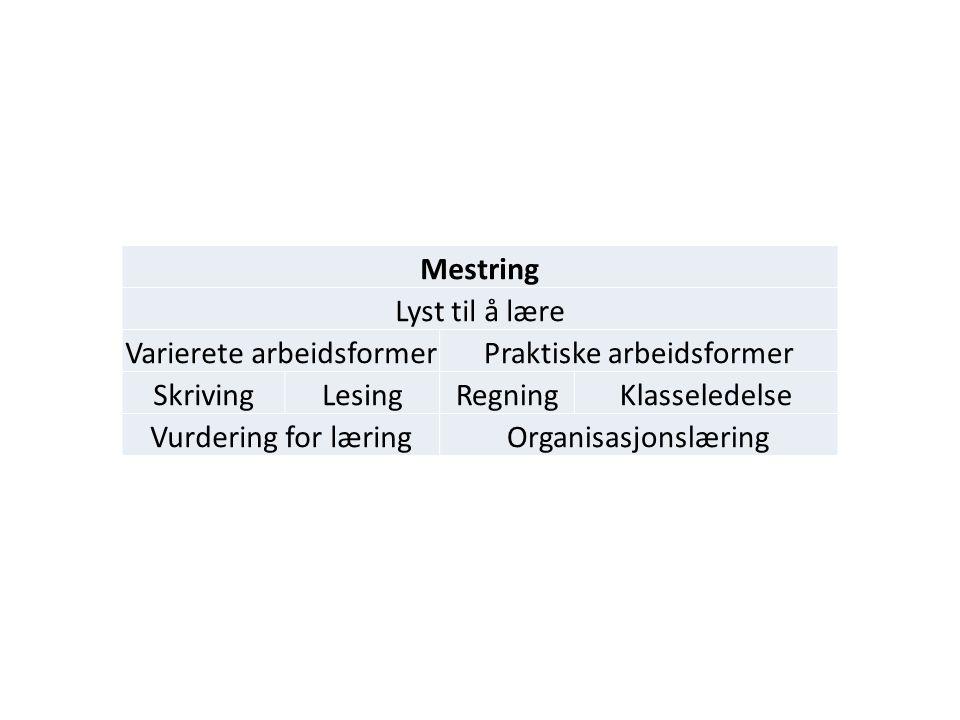 Mestring Lyst til å lære Varierete arbeidsformerPraktiske arbeidsformer SkrivingLesingRegningKlasseledelse Vurdering for læringOrganisasjonslæring